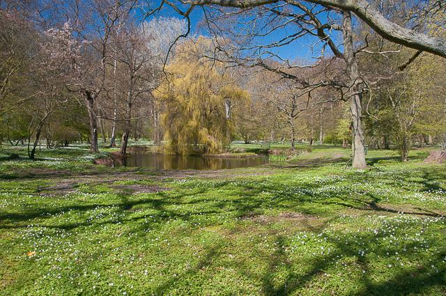 Park in Juliusruh von den Franzosen angelegt